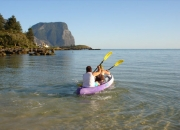 A leisurely paddle around the lagoon spotting fish, turtles, and crustaceans.